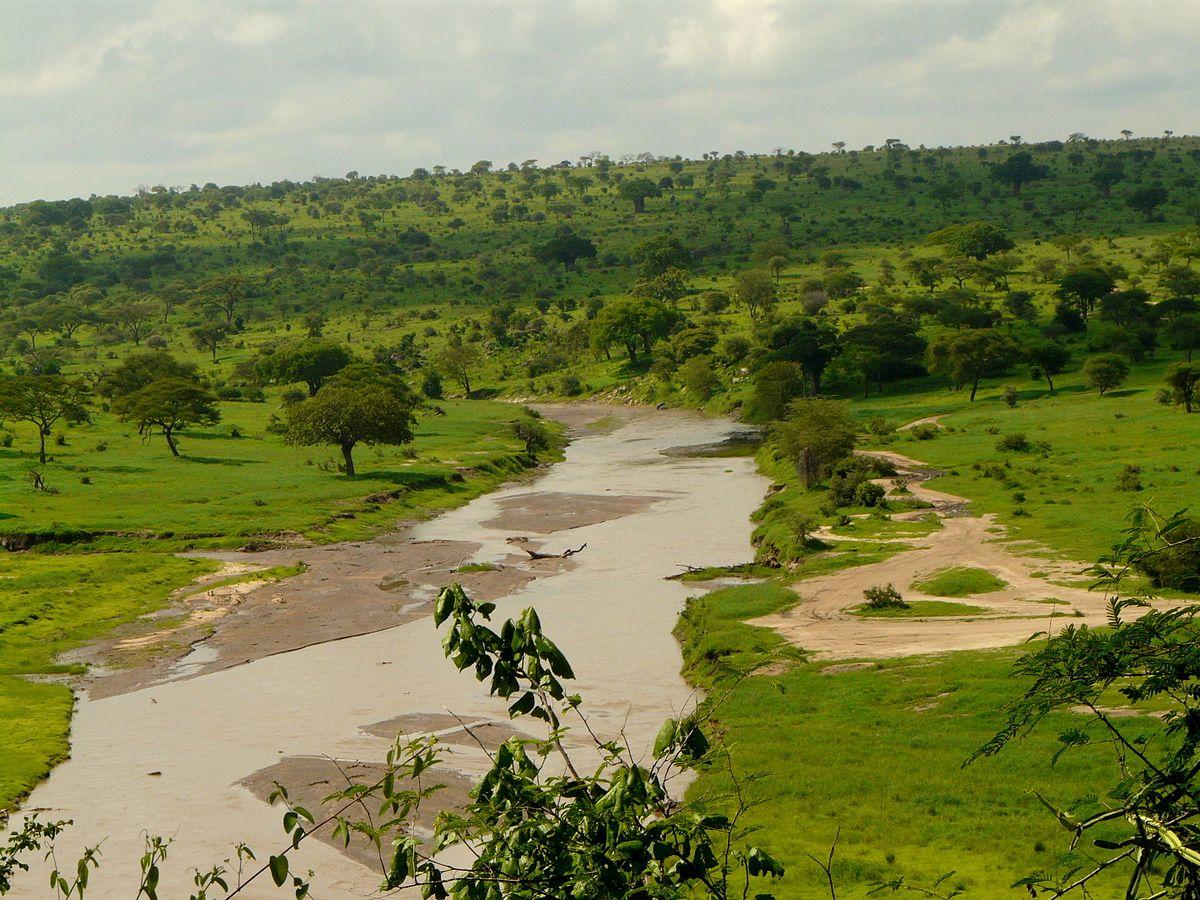 Étant donné que la Tanzanie abrite un certain nombre de sites de safari de premier plan, il va de soi que vous ne les connaissez peut-être pas tous.