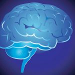 The 10 branches of Psychology