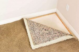 How to cut Carpet